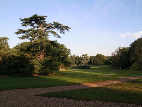 vue sur le jardin anglais